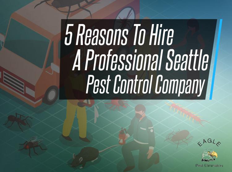 Seattle Pest Control Company Eagle Pest Eliminators