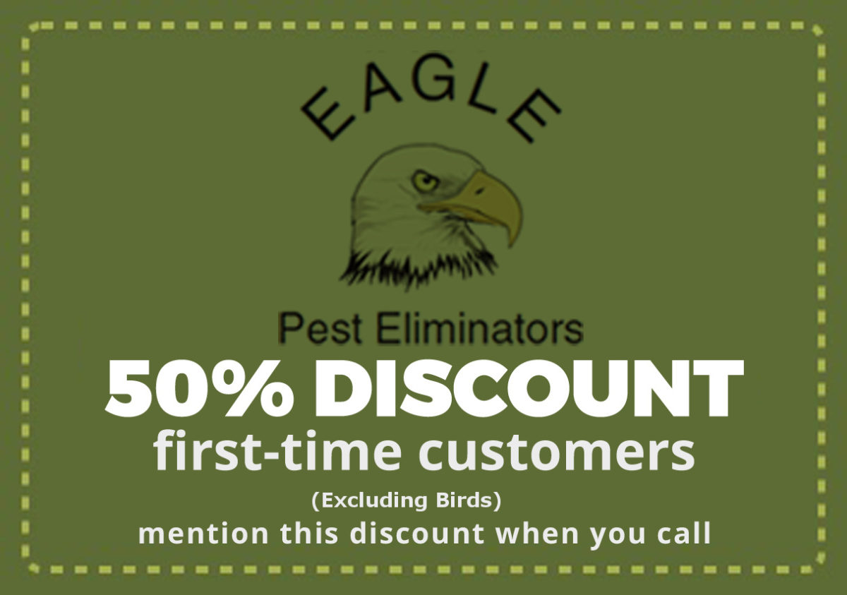 50% OFF Pest & Rodent Control Services