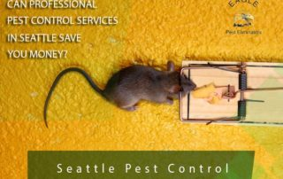 Seattle & Everett Pest Control Company