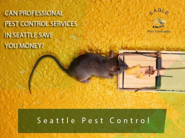Seattle & Everett Pest Control Company